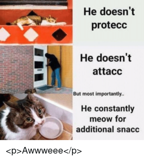 For, Meow, and But: He doesn't  protecc  He doesn't  attacc  But most importantly.  He constantly  meow for  additional snacc <p>Awwweee</p>