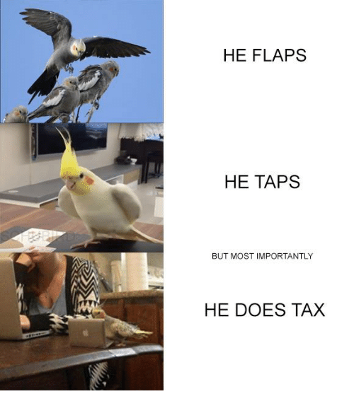 Taps, Tax, and But: HE FLAPS  HE TAPS  BUT MOST IMPORTANTLY  HE DOES TAX