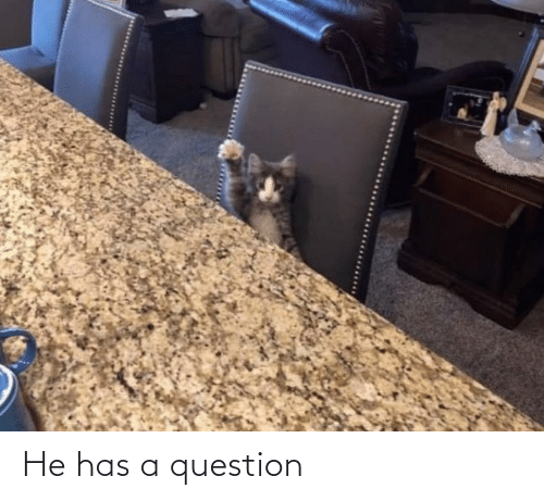 Has: He has a question