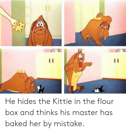 kittie: He hides the Kittie in the flour box and thinks his master has baked her by mistake.