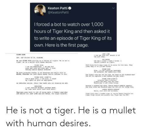 Is Not: He is not a tiger. He is a mullet with human desires.