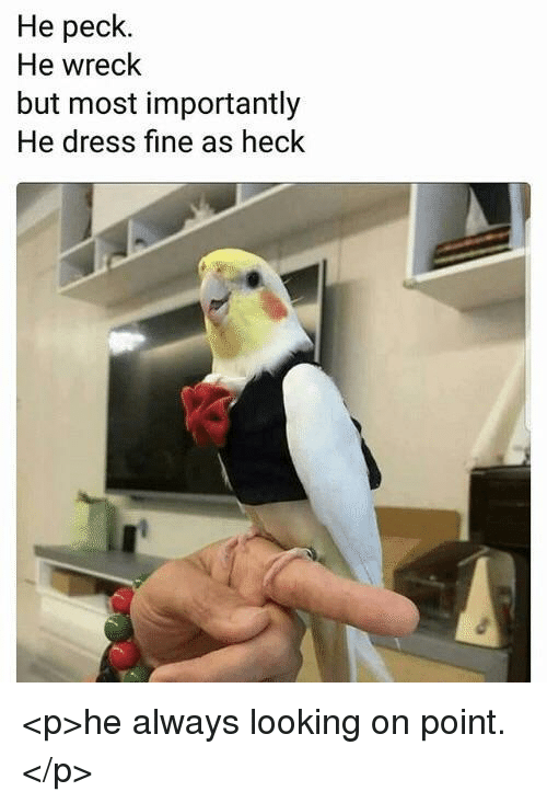 Dress, Looking, and Fine: He peck.  He wreck  but most importantly  He dress fine as heck <p>he always looking on point.</p>