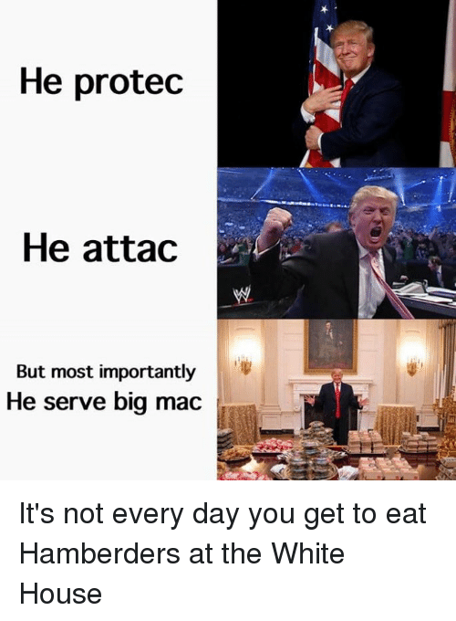 Dank, White House, and House: He protec  He attac  But most importantly  He serve big mac It's not every day you get to eat Hamberders at the White House