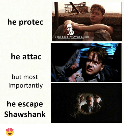 movie lines: he proted  THE BEST MOVIE LINES  focebook.com/Thebestmovielines  he attad  but most  importantly  he escape  Shawshank 😍