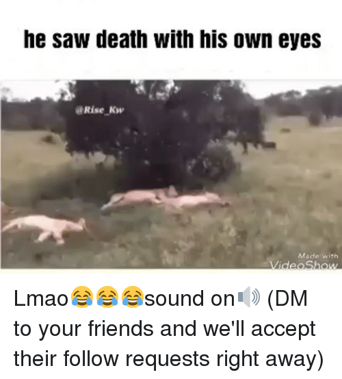 Friends, Lmao, and Memes: he saw death with his own eyes  @Rise Kw  Made with Lmao😂😂😂sound on🔊 (DM to your friends and we'll accept their follow requests right away)