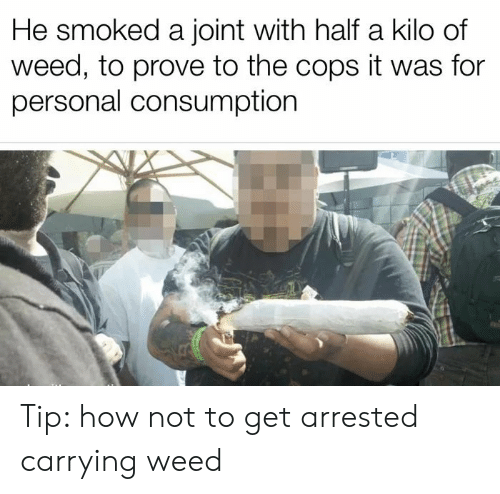 Weed, How, and Personal: He smoked a joint with half a kilo of  weed, to prove to the cops it was for  personal consumption Tip: how not to get arrested carrying weed