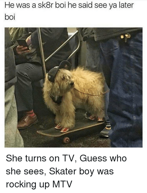 MTV: He was a sk8r boi he said see ya later  boi She turns on TV, Guess who she sees, Skater boy was rocking up MTV