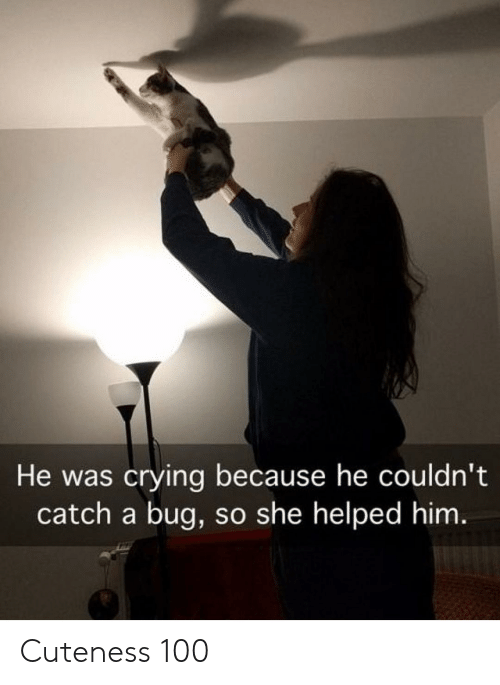 Crying, Him, and Bug: He was crying because he couldn't  catch a bug, so she helped him Cuteness 100