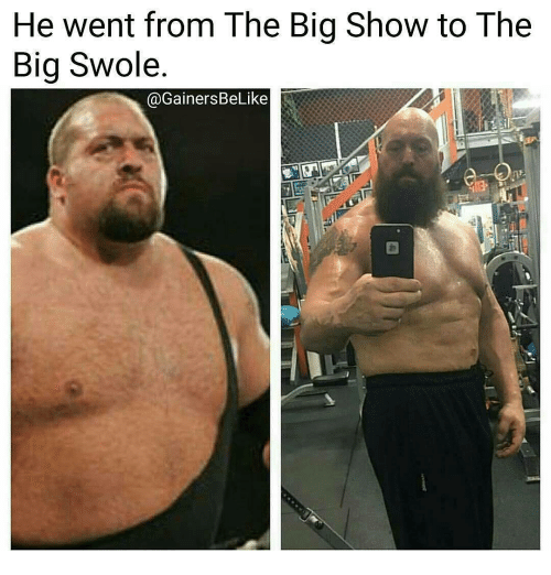 Memes, Swole, and Big Show: He went from The Big Show to The  Big Swole.  @Gainers BeLike