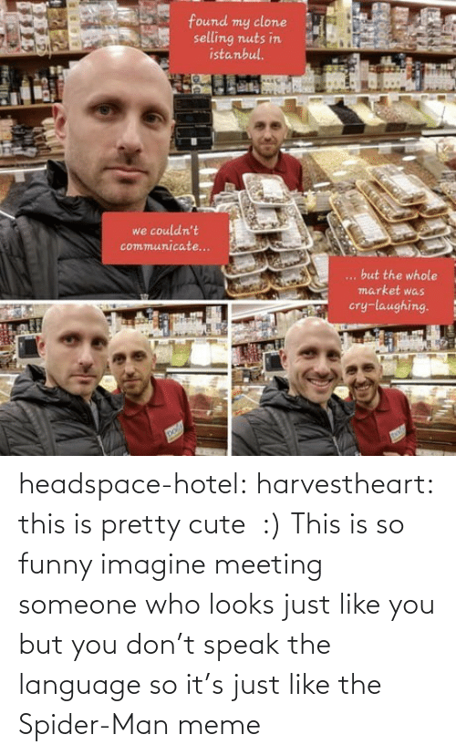 Someone Who: headspace-hotel:  harvestheart: this is pretty cute  :)   This is so funny imagine meeting someone who looks just like you but you don't speak the language so it's just like the Spider-Man meme