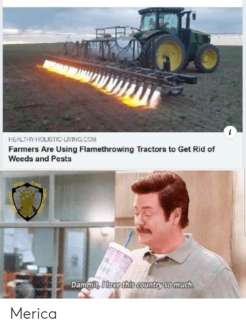 Dammit: HEALTHY-HOLISTIC-LIVING.COM  Farmers Are Using Flamethrowing Tractors to Get Rid of  Weeds and Pests  OF MEN  Dammit, Olove this country so much  SLMYN Merica