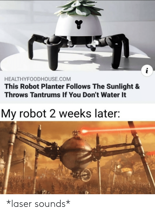 2 Weeks: HEALTHYFOODHOUSE.COM  This Robot Planter Follows The Sunlight &  Throws Tantrums If You Don't Water It  My robot 2 weeks later: *laser sounds*