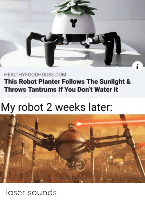 robot: HEALTHYFOODHOUSE.COM  This Robot Planter Follows The Sunlight &  Throws Tantrums If You Don't Water It  My robot 2 weeks later: laser sounds