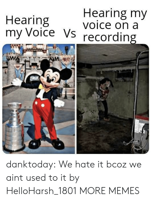 Dank, Memes, and Tumblr: Hearing my  voice on a  Hearing  my Voice Vs  recording danktoday:  We hate it bcoz we aint used to it by HelloHarsh_1801 MORE MEMES
