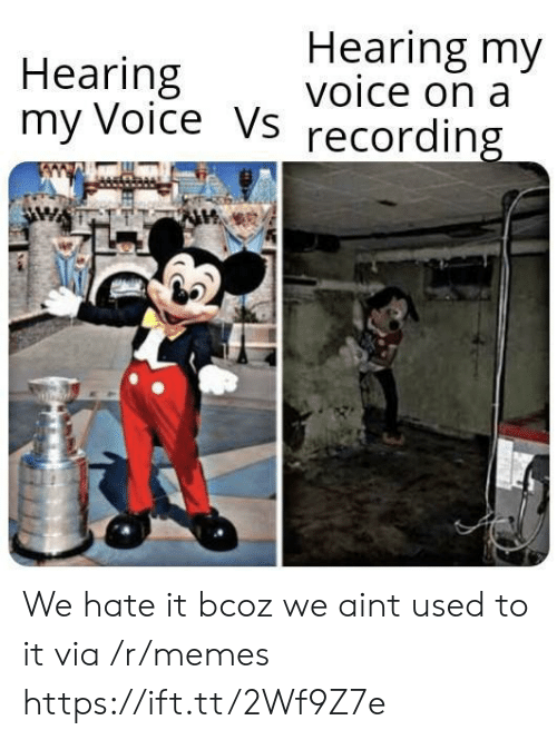 Memes, Voice, and Via: Hearing my  voice on a  Hearing  my Voice Vs  recording We hate it bcoz we aint used to it via /r/memes https://ift.tt/2Wf9Z7e