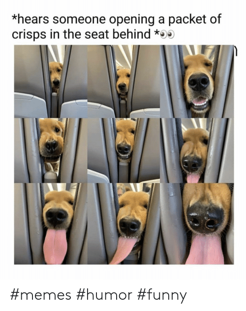 seat: *hears someone opening a packet of  crisps in the seat behind * #memes #humor #funny