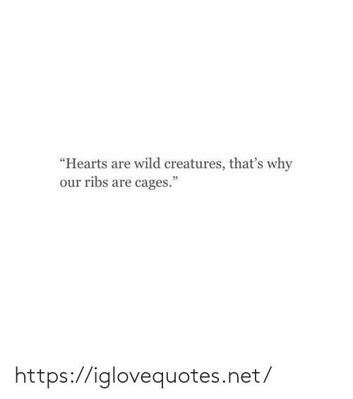 """Thats Why: """"Hearts are wild creatures, that's why  our ribs are cages."""" https://iglovequotes.net/"""