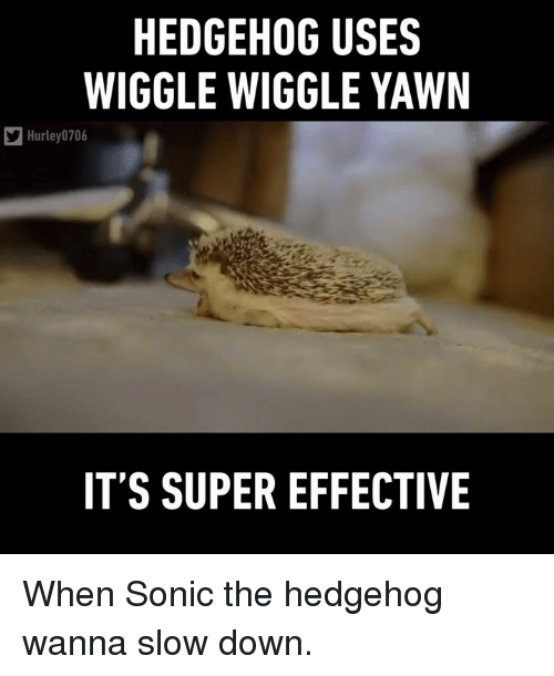 Hedgehoging: HEDGEHOG USES  WIGGLE WIGGLE YAWN  Hurley 0706  IT'S SUPER EFFECTIVE When Sonic the hedgehog wanna slow down.