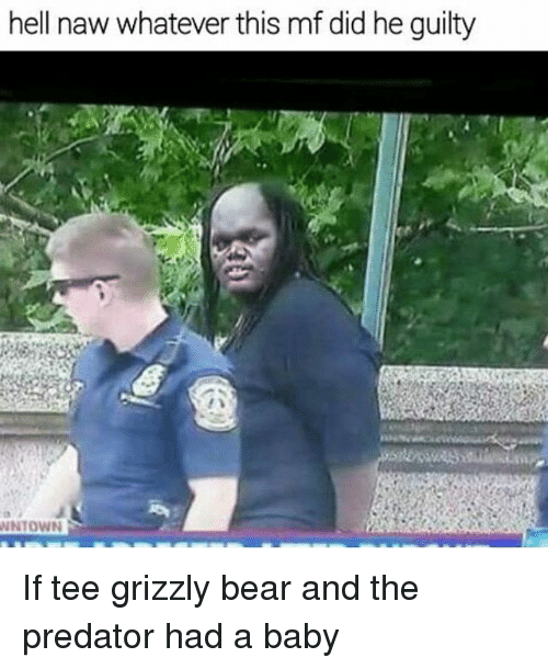 Funny, Bear, and Predator: hell naw whatever this mf did he guilty  WNTOWN If tee grizzly bear and the predator had a baby