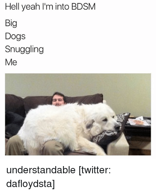 Hells Yeah: Hell yeah I'm into BDSM  Big  Dogs  Snuggling  Me understandable [twitter: dafloydsta]