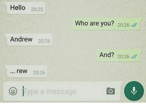 Hello, Memes, and 🤖: Hello  20:25  Who are you?  20:26  Andrew  20:26  And?  20:26  rew 20:26  ype a message