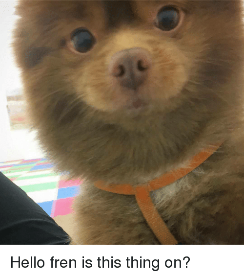 Hello, Thing, and This: Hello fren is this thing on?