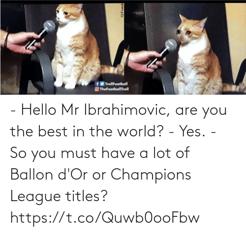 Hello: - Hello Mr Ibrahimovic, are you the best in the world?   - Yes.  - So you must have a lot of Ballon d'Or or Champions League titles? https://t.co/Quwb0ooFbw