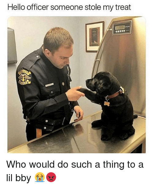 bby: Hello officer someone stole my treat Who would do such a thing to a lil bby 😭😡