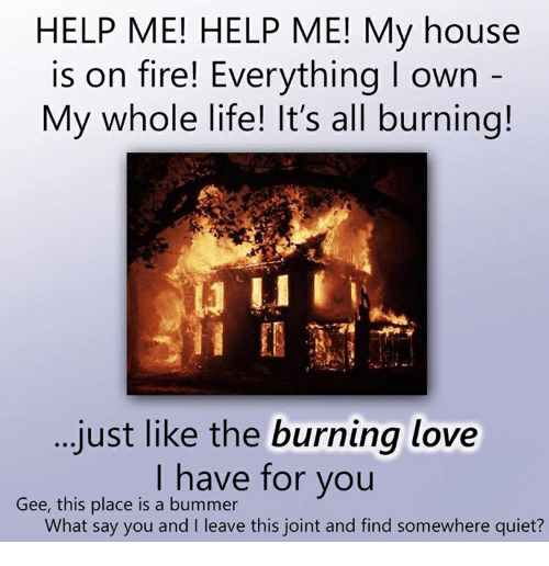 Fire, Life, and Love: HELP ME! HELP ME! My house  is on fire! Everything I own  My whole life! It's all burning!  just like the burning love  I have for you  Gee, this place is a bummer  What say you and I leave this joint and find somewhere quiet?