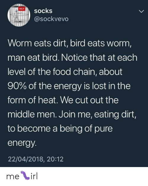 Energy, Food, and Lost: HELP  socks  @sockvevo  Worm eats dirt, bird eats worm,  man eat bird. Notice that at each  level of the food chain, about  90% of the energy is lost in the  form of heat. We cut out the  middle men. Join me, eating dirt,  to become a being of pure  energy.  22/04/2018, 20:12 me🐛irl