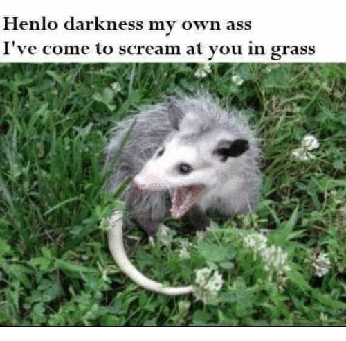 Ass, Scream, and Darkness: Henlo darkness my own ass  I've come to scream at you in grass