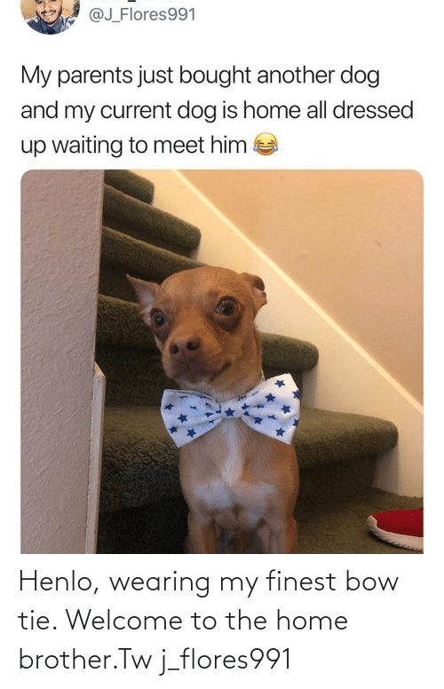 welcome: Henlo, wearing my finest bow tie. Welcome to the home brother.Tw j_flores991