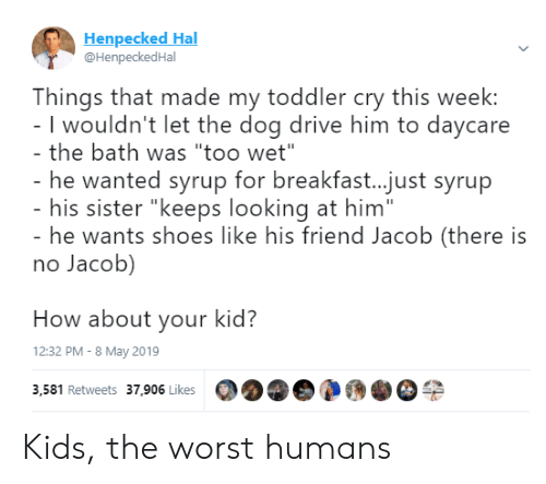 """hal: Henpecked Hal  @HenpeckedHal  Things that made my toddler cry this week:  I wouldn't let the dog drive him to daycare  the bath was """"too wet""""  he wanted syrup for breakfast...just syrup  his sister """"keeps looking at him""""  he wants shoes like his friend Jacob (there is  no Jacob)  How about your kid?  12:32 PM - 8 May 2019  3,581 Retweets 37,906 Likes Kids, the worst humans"""