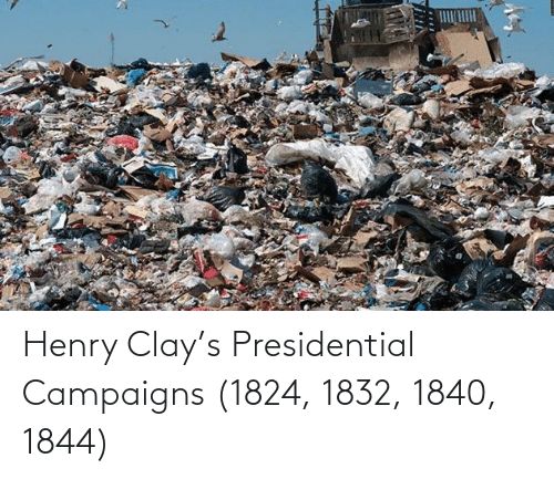 henry: Henry Clay's Presidential Campaigns (1824, 1832, 1840, 1844)