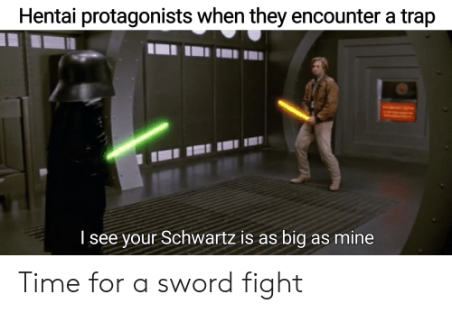 Anime, Hentai, and Trap: Hentai protagonists when they encounter a trap  Tsee your Schwartz is as big as mine Time for a sword fight