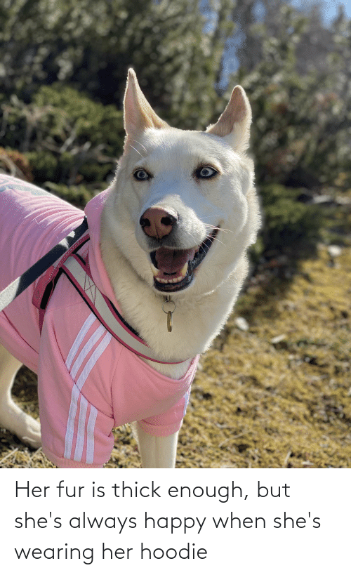 fur: Her fur is thick enough, but she's always happy when she's wearing her hoodie