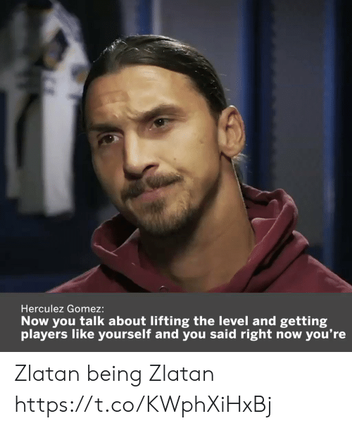 Memes, 🤖, and You: Herculez Gomez:  Now you talk about lifting the level and getting  you're  players like yourself and you said right now Zlatan being Zlatan  https://t.co/KWphXiHxBj