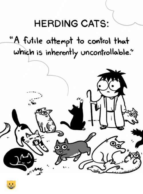 Cats, Memes, and Control: HERDING CATS:  futile attempt to control that  which is inherently uncontrollable. 😺