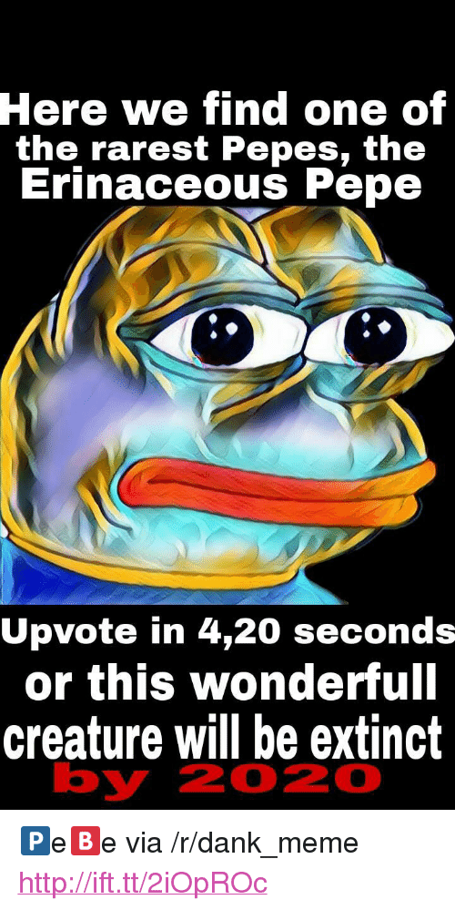 "Dank, Meme, and Http: Here  we find one of  the rarest Pepes, th<e  Erinaceous Pepe  Upvote in 4,20 seconds  or this wonderfull  creature will be extinct  by  2020 <p>🅿e🅱e via /r/dank_meme <a href=""http://ift.tt/2iOpROc"">http://ift.tt/2iOpROc</a></p>"