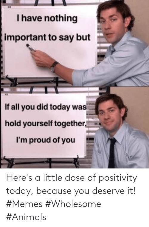 positivity: Here's a little dose of positivity today, because you deserve it! #Memes #Wholesome #Animals