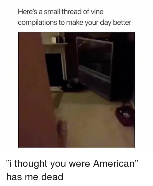 """American, Girl Memes, and Thought: Here's a small thread of vinee  compilations to make your day better """"i thought you were American"""" has me dead"""