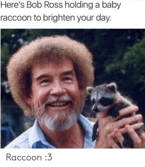 Bob Ross, Raccoon, and Baby: Here's Bob Ross holding a baby  raccoon to brighten your day. Raccoon :3