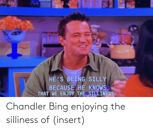 silliness: HE'S BEING SILLY  BECAUSE HE KNOWS  THAT WE ENJOY THE SILLINESS Chandler Bing enjoying the silliness of (insert)