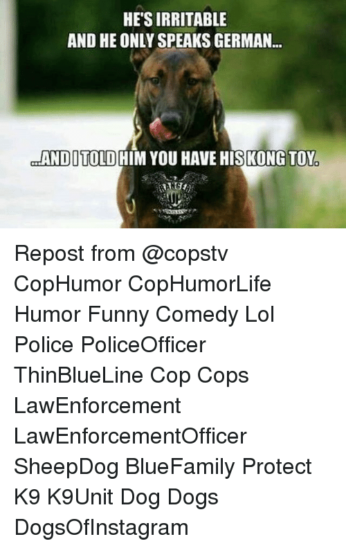 irritable: HE'S IRRITABLE  AND HE ONLY SPEAKS GERMAN..  ANDITOLD HIM YOU HAVE HISKONG TOY Repost from @copstv CopHumor CopHumorLife Humor Funny Comedy Lol Police PoliceOfficer ThinBlueLine Cop Cops LawEnforcement LawEnforcementOfficer SheepDog BlueFamily Protect K9 K9Unit Dog Dogs DogsOfInstagram