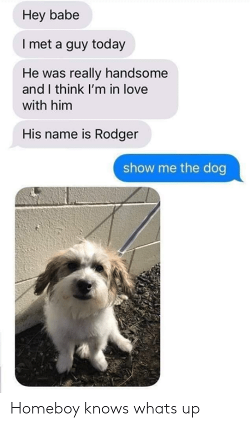 Homeboy: Hey babe  I met a guy today  He was really handsome  and I think I'm in love  with him  His name is Rodger  show me the dog Homeboy knows whats up