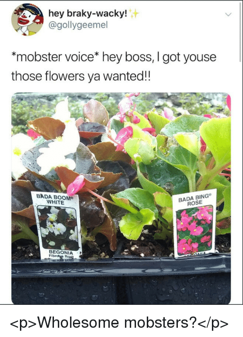 Bing, Flowers, and Rose: hey braky-wacky!  @gollygeemel  *mobster voice* hey boss, I got youse  those flowers ya wanted!!  BADA BOOM®  WHITE  BADA BING  ROSE  BEGONIA  Fib <p>Wholesome mobsters?</p>