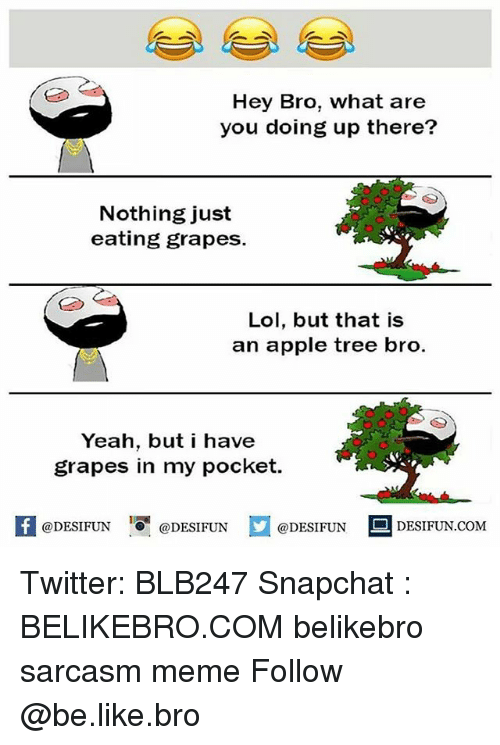 what ares: Hey Bro, what are  you doing up there?  Nothing just  eating grapes.  Lol, but that is  an apple tree bro.  Yeah, but i have  grapes in my pocket.  @DESIFUN  DESIFUN.COMM Twitter: BLB247 Snapchat : BELIKEBRO.COM belikebro sarcasm meme Follow @be.like.bro