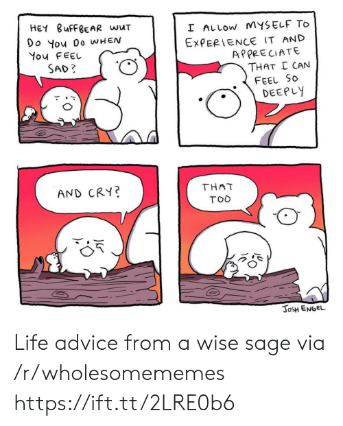 Sage: HEY BUFFBEAR wuT  I ALLOW MYSELF TO  Do You 0o WHEN  You FEEL  EXPERIENCE IT AND  APPRECIATE  THAT I CAN  SAD?  FEEL SO  DEEPLY  THAT  AND CRY?  TOO  JOSH ENGEL  JLr Life advice from a wise sage via /r/wholesomememes https://ift.tt/2LRE0b6