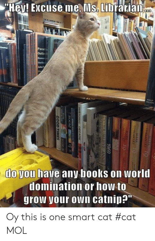"""Smart Cat: Hey! Excuse me, Ms. Librarian  Parac  Outla  Remen  the Be  John Ty  Ph  PHIIP  WLSON  FE  do you have any books on world  domination or how to  grow your own catnip?""""  KURLANSKY19  KERIANSKY 9  1969  YOUBDIEVE ANNIE  INMAGIC ER  Keetrice  doing  HISTORIC DECCADE  BOOM  GOOD TIMES Oy this is one smart cat                   #cat        MOL"""
