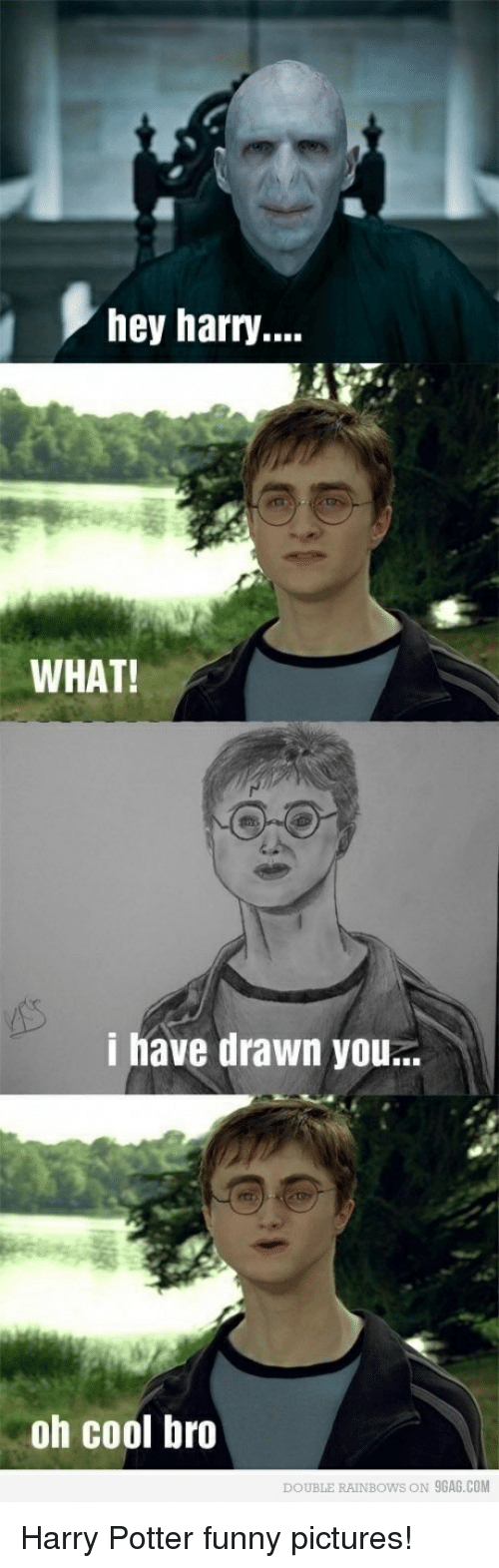 9gag, Funny, and Harry Potter: hey harry...  WHAT!  i have drawn you..  oh cool bro  DOUBLE RAINBOWS ON 9GAG.COM Harry Potter funny pictures!